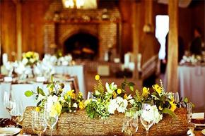 餐桌上的浪漫演绎 木桩花色散发自然幽香