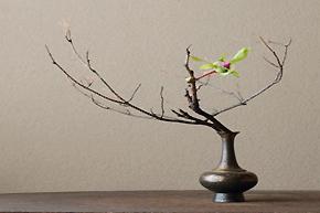 极具东方禅意意境的花艺装饰